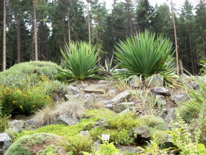 15 Botanischer Garten