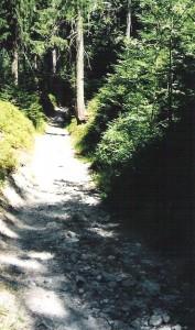 Bild110-2